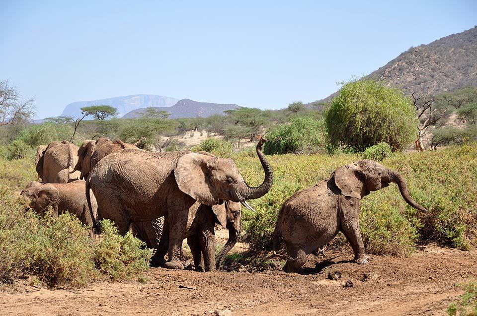 Kenya 2011 251