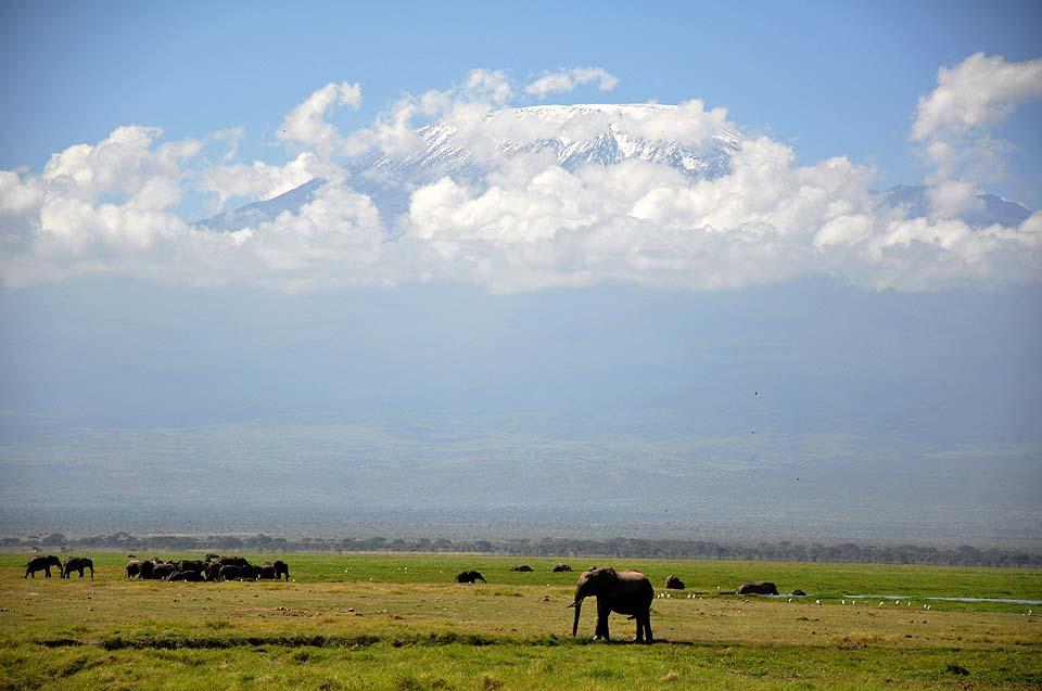 Kenya 2011 353