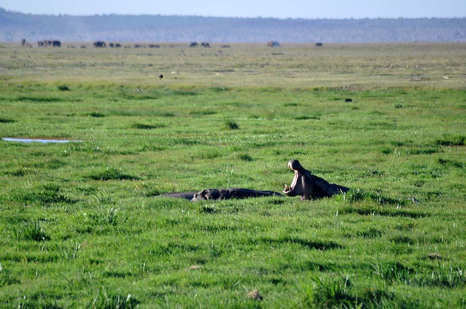 Kenya 2011 384