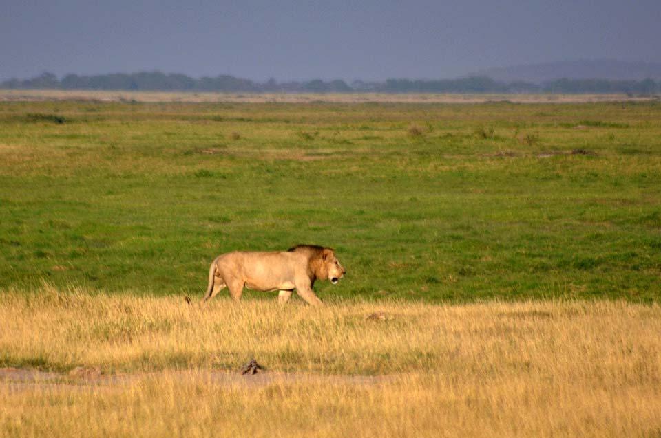 Kenya 2011 423