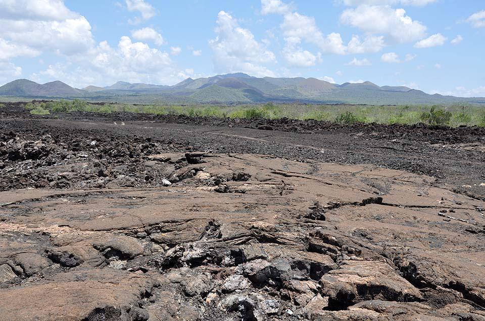 Kenya 2011 477