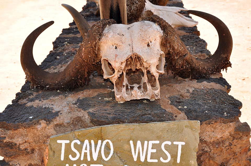 Kenya 2011 480