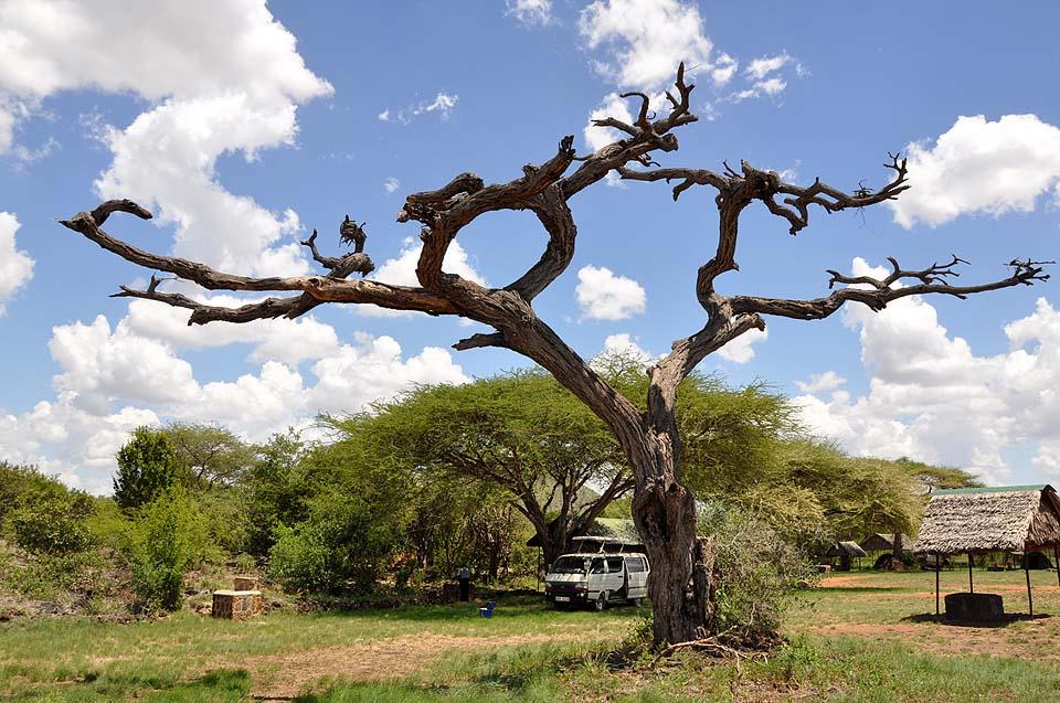Kenya 2011 486
