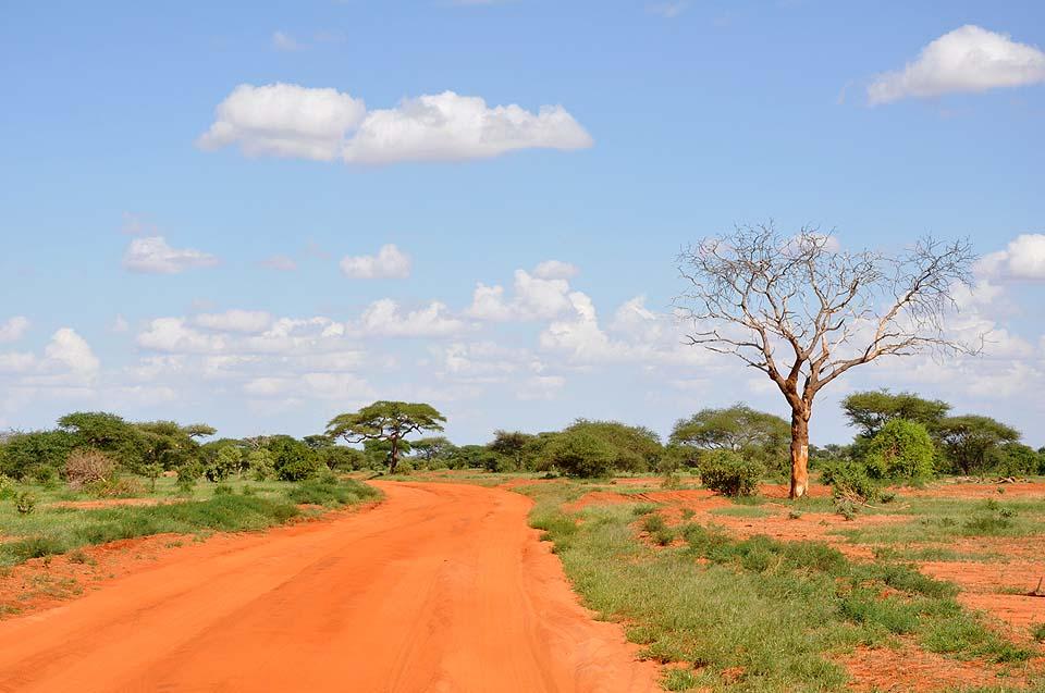 Kenya 2011 501