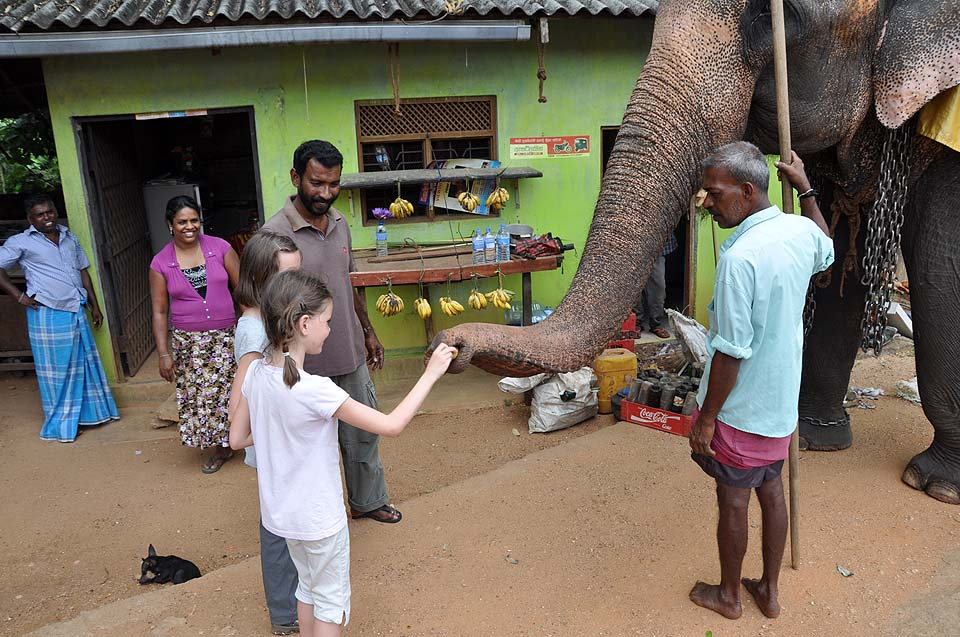 Sri Lanka 406
