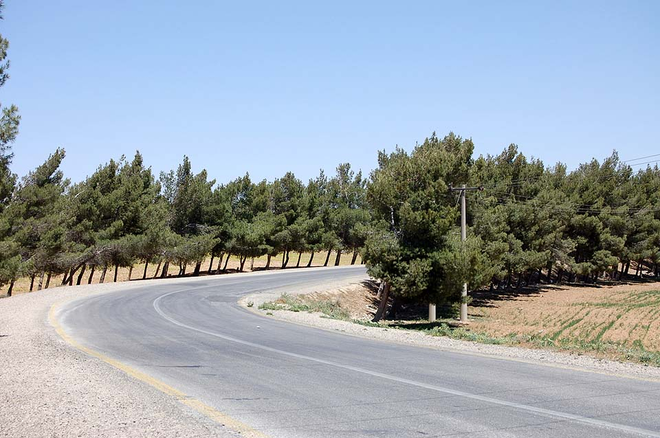 Jordanie 2009 161b