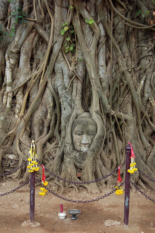 Thailande 2008 0168