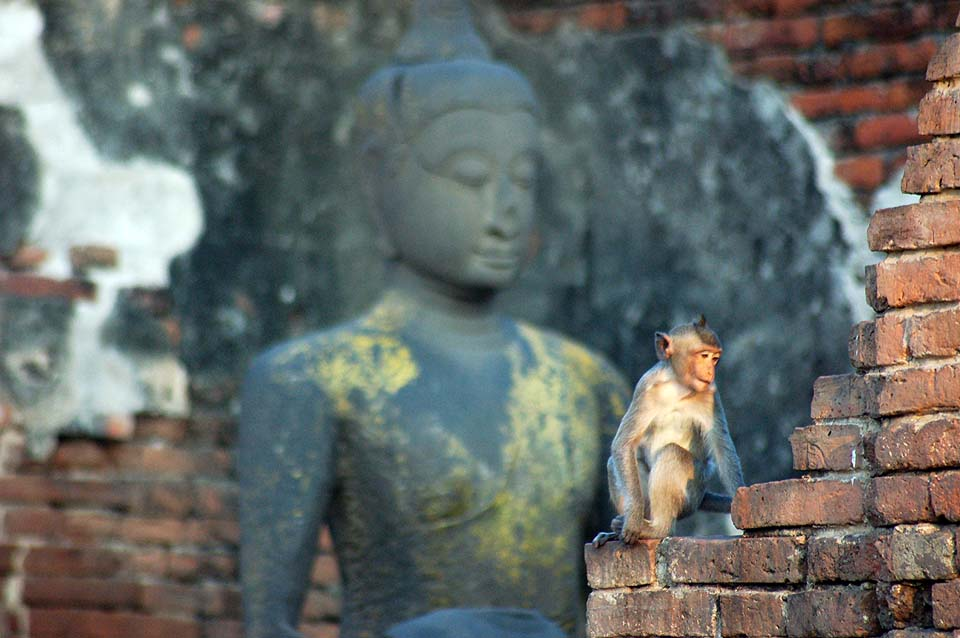 Thailande 2008 0211