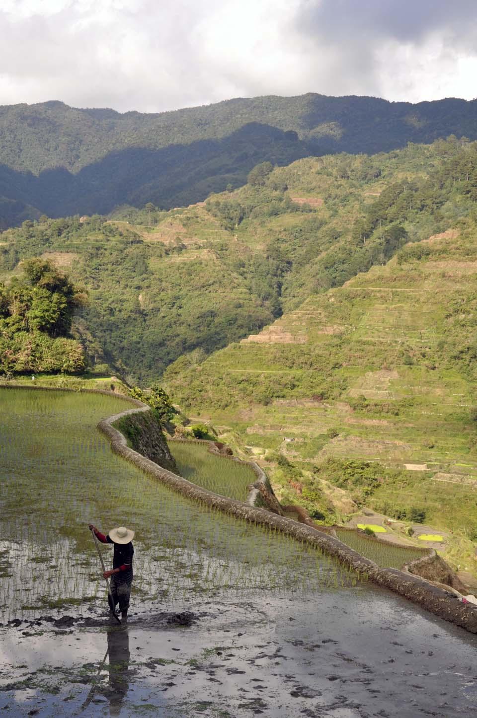 Philippines 667