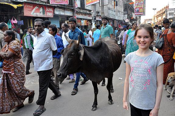Inde 177
