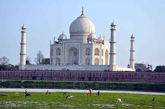 Inde 988