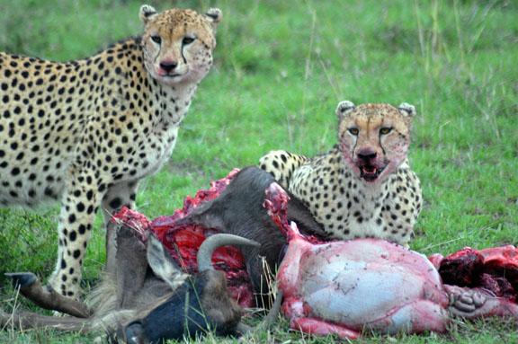 Tanzanie 2013 2012-12-26 088