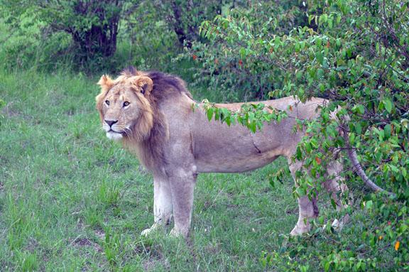 Tanzanie 2013 2012-12-26 195