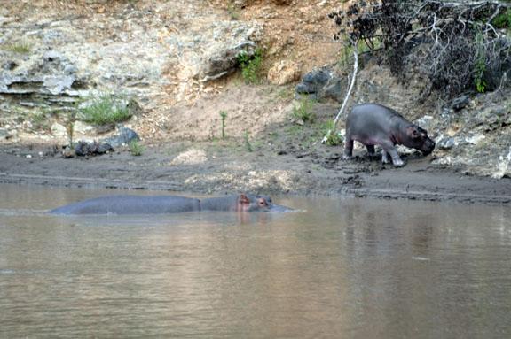 Tanzanie 2013 2012-12-26 357