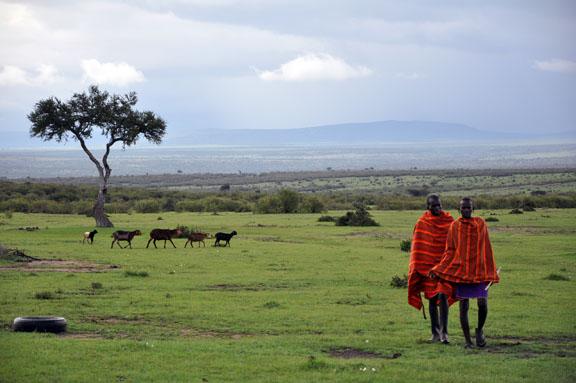 Tanzanie 2013 2012-12-26 555