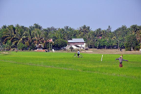 cambodge-1001