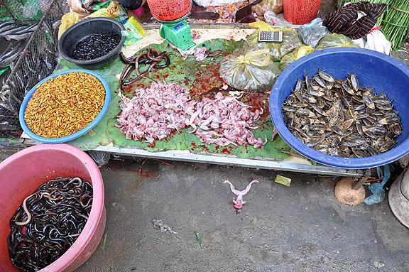 cambodge-583