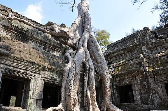 cambodge-654