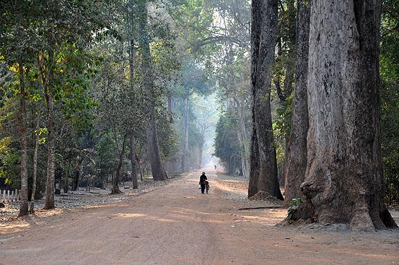 cambodge-743