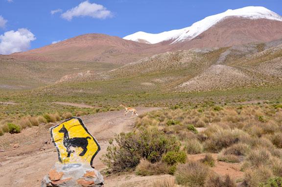 Bolivie, Bolivia 491