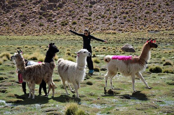Bolivie, Bolivia 530