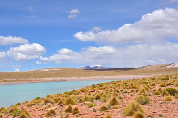 Bolivie, Bolivia 626