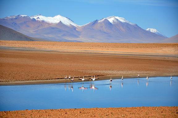 Bolivie, Bolivia 659