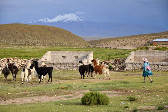 Bolivie, Bolivia 840